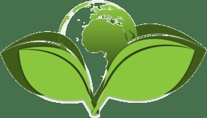 engagement eco responsable